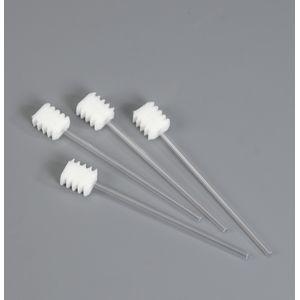 Bâtonnet mousse à dents x20